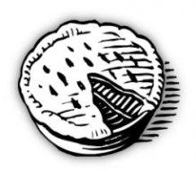 pitastrudl